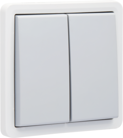 interrupteur double allumage en saillie tanche aux. Black Bedroom Furniture Sets. Home Design Ideas